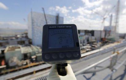The Lingering Effects of Fukushima on Fish