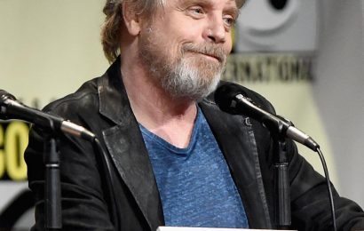 Mark Hamill Says Luke Skywalker Could Be Gay