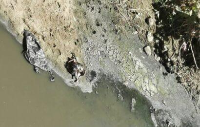 Abandonan a bebé en aguas del Río Atoyac; encuentran el cuerpo putrefacto