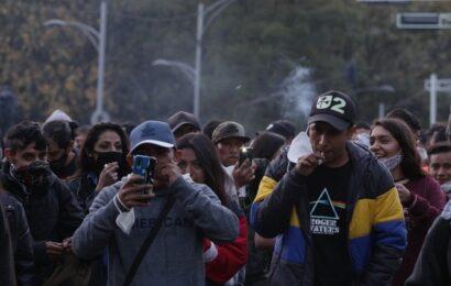 Legaliza el Senado uso lúdico de la mariguana