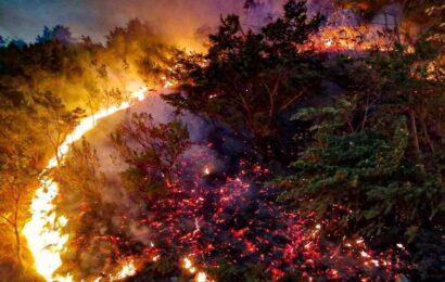 Lleva tres días incendio forestal en San Miguel Chimalapa