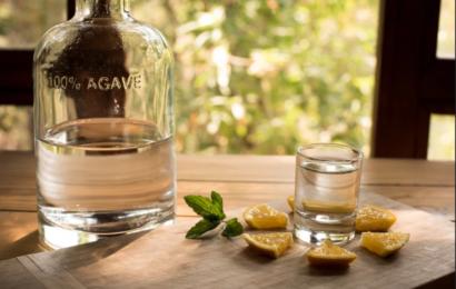 El mezcal es reconocido como una de las mejores bebidas del mundo