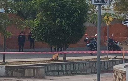 Imparable la delincuencia en Santa Lucía del Camino, dejan cabeza de cerdo y narcomensaje