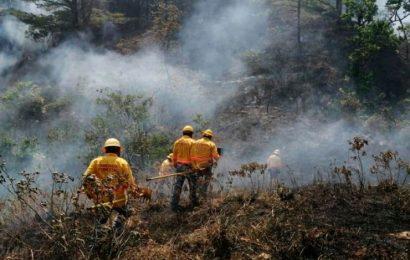 Reportan cuatro incendios activos en Oaxaca y emiten declaratoria de emergencia