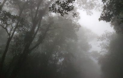 Para hoy se prevé ambiente frío en Oaxaca
