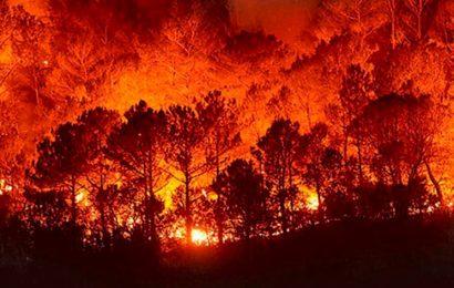 Incendios forestales se disparan y Conagua reitera que en 50% de Oaxaca hay sequedad y sequía