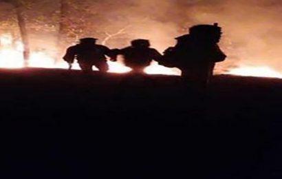 Declaran emergencia en 5 municipios de Oaxaca por incendios forestales