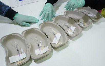 Covax iniciará distribución de 337 millones de vacunas contra COVID-19; México recibirá 6.4 millones en primera fase