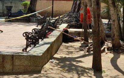 Muere en pleno centro de Oaxaca