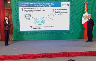 Buscan voluntarios para 'Patria', vacuna mexicana contra Covid