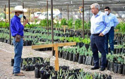 AMLO propondrá a Biden plan regional de migración; contempla a Canadá y Centroamérica