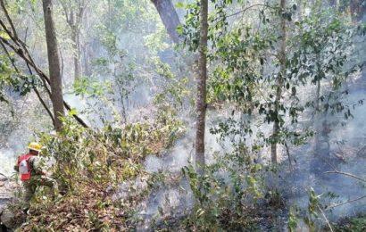 Incendio en san Miguel del Puerto no da tregua; lleva 7 días