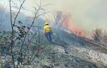 Muere al no respetar protocolos en incendios controlados en Oaxaca
