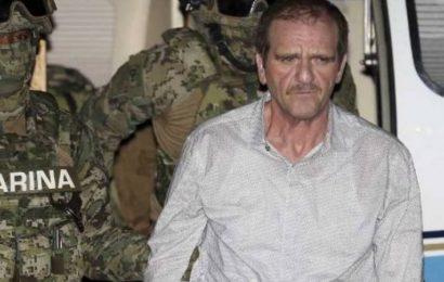 Juzgado aplicó «sabadazo» para ordenar la liberación del «Güero Palma»: AMLO